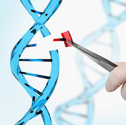 Moleküler Kardiyoloji Genetik