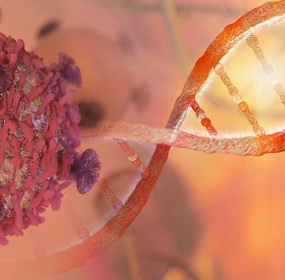 Moleküler Onkoloji